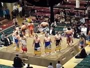 Watch free video Sumo Wrestlers