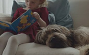 Watch free video Allegro Commercial: Dog