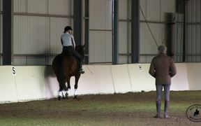 Watch free video Training for Wellness with Manolo Mendez Dressage