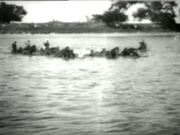 Watch free video Herding Horses Across The River 1903