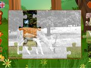 Watch free video Puzzles: Animals