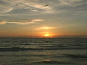 Watch free video A Florida Beach Sunset