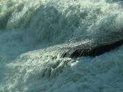 Watch free video Close Up Shot of a Waterfall