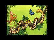 Watch free video Monkey Puzzle - James Skerritt