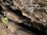 Watch free video Petzl RocTrip Mexico - Sport Climbing in Mexico