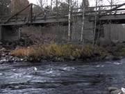ดูการ์ตูนฟรี Old Wood Bridge
