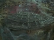 Watch free video Stingray.15. Secret of the Giant Oyster