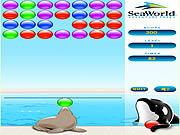 Splash Blast game