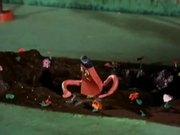 شاهد كارتون مجانا A Tale of Two Gumbys - Robot Rumpus