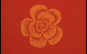 Watch free video Fibonacci Flower