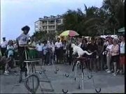 Watch free video Mallory Square Show