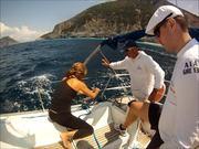 Race Sailing in Sporades Islands