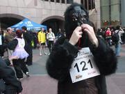 Watch free video Great Gorilla Race