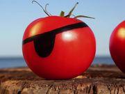 Watch free video Tomato Romp Videos: Tomato Fight
