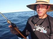 Watch free video IGFA Great Marlin Race - Striped Marlin Tag