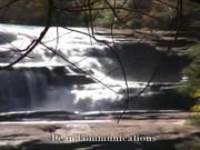 צפו בסרטון מצויר בחינם Forest and Park - Hunger Games Location