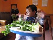 شاهد كارتون مجانا Bruno Meets Celery