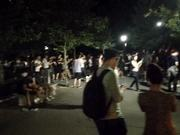 צפו בסרטון מצויר בחינם Vaporeon Stampede Central Park, NYC