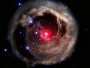 Watch free video V838 Monocerotis revisited