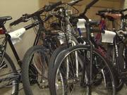 Watch free video Hoboken police arrest 12 in rash of bike thefts