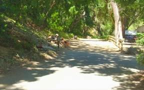 Watch free video 23 Lazy Oaks for Carmel Realty