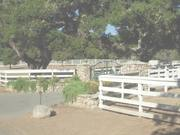 Watch free video 7 San Clemente Dr for Carmel Realty