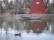 Watch free video Marlene Reel