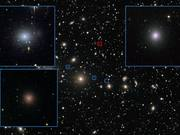 Watch free video Perseus Dwarf Galaxies zoom-in animation