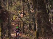 Watch free video Lifestyle Bike Logistics