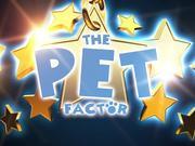 Watch free video The Pet Factor Cat