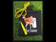 Watch free video Dog Training's Three Point Whistle Recall Training