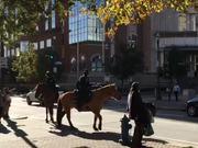 Watch free video Horse Patrol