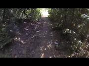 Watch free video Santa Cruz Solo Test Video