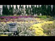 Watch free video Da Nang Is Awesome