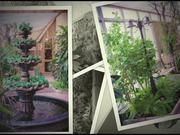 "Watch free video Winter Garden ""Kiyanochka"""