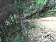Watch free video Gran CicloPaseo Bike House - Julio 5/2015