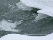 Watch free video Yellowstone's Northern Range