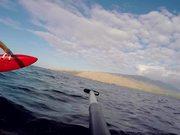 Watch free video Maui - winter 2016