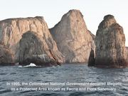 Watch free video The Malpelo Fauna And Flora Sanctuary