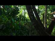 شاهد كارتون مجانا xXx: Return of Xander Cage Trailer