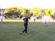 Watch free video Bubble Soccer