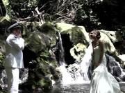 Watch free video Stephanie And Matthew Reed Hawaiian Wedding