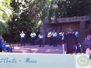 Watch free video The Music Of Walt Disney World