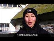 Watch free video Alcatraz Education Video
