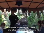 Watch free video Jungle Cruise - Walt Disney World