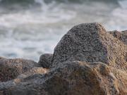 Mira el vídeo gratis de Beach and Sand