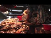 Watch free video Blog Clip: Fish Market Chittagong