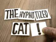 Mira dibujos animados gratis Meow: The Great Hypnosis Show