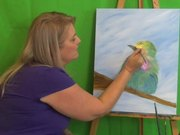 Watch free video Colorful Bird