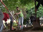 Watch free video Brian Clough Sensory Garden, Carlton